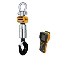 Крановые весы промышленные CAS 10 THD с RF Caston III (с пультом управления TWN)