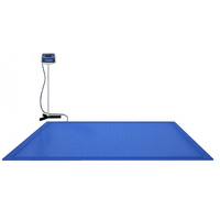 Весы платформенные врезные в пол ВСП4-3000.2 В9 (1250х1000)