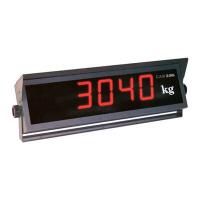 Дополнительный выносной индикатор CAS CD-3030