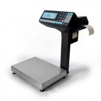 Весы с печатью этикеток МАССА МК-6.2-R2P10