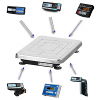 Товарные весы-регистраторы МАССА TB-S-200.2-1, с возможностью печати этикеток (весовой модуль)